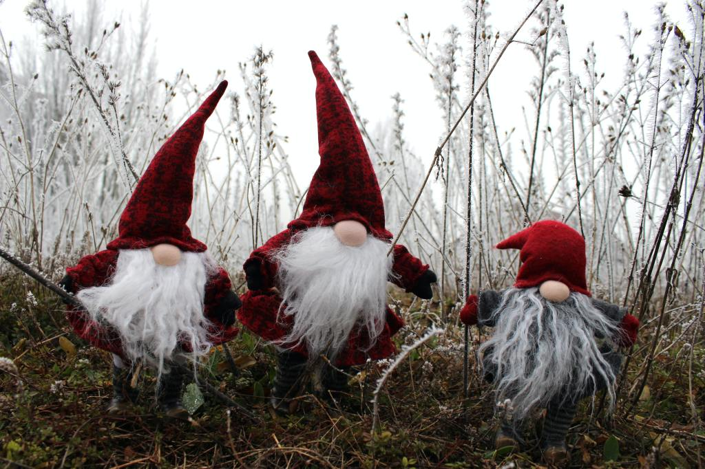 Stuffed gnomes in some kind of winter scene