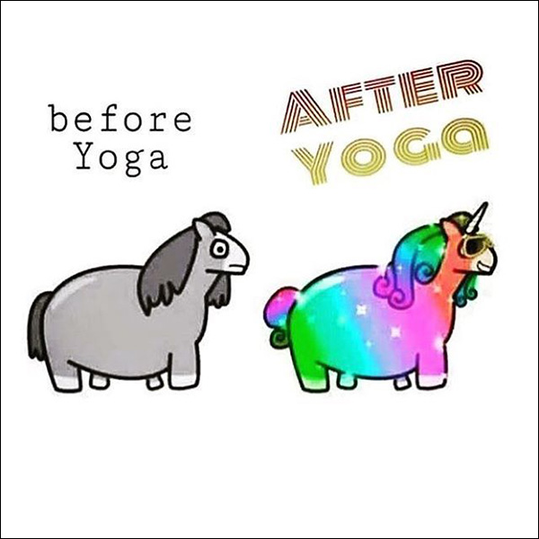 chubby horse and unicorn before and after yoga